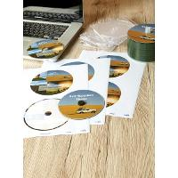 AVERY L7676-25 CD/DVD LASER LABELS  2/S 524483